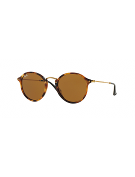 RAY-BAN RB 2447 1160 | ROUND FLECK
