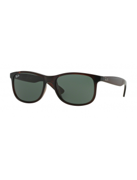 RAY-BAN RB 4202 714/71 | ANDY